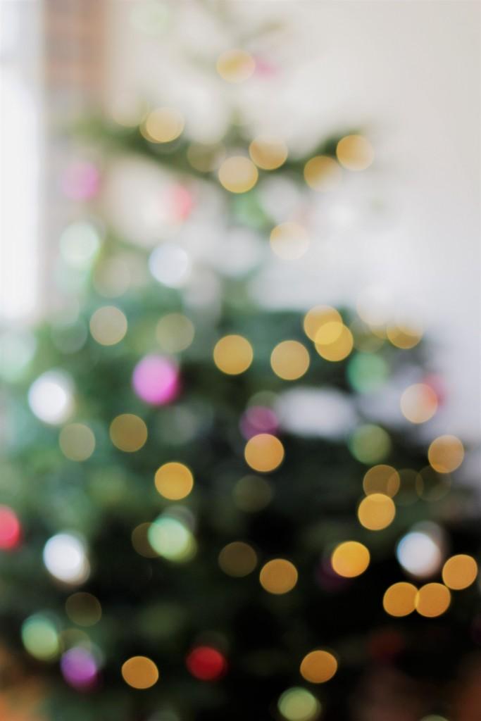 Eine Weihnachtswoche geht zu Ende. Bloggerin Katharina fasst ihre Woche unter einigen Schlagwörtern zusammen. Der Tannenbaum mit seinen bunten Lichtern spielte dabei natürlich eine Rolle.