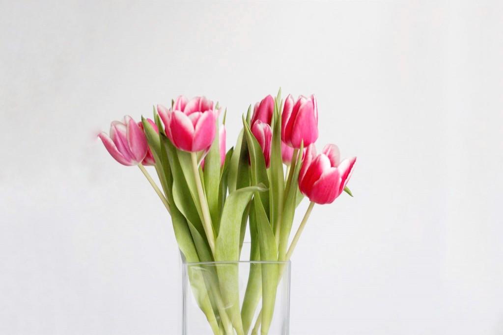Eine entspannte Woche geht zu Ende. Für die nächste sind bereits frühlingshafte Temperaturen angekündigt. Bloggerin Katharina hat den Frühling bei sich zuhause schon mit frischen Tulpen einziehen lassen.
